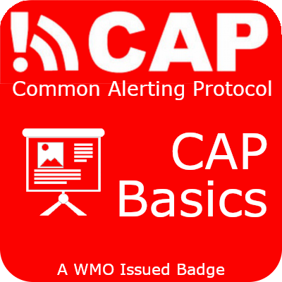 CAP basics badge